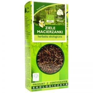 macierzanka-ziele-eko-dary-natury