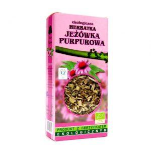 jezowka-purpurowa-dary-natury-eko